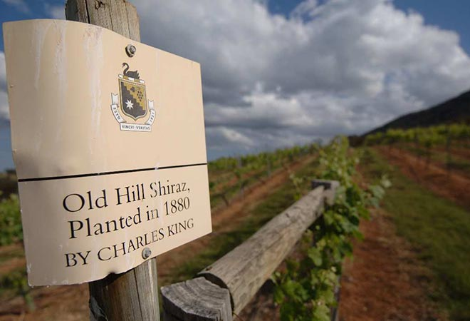 Hunter Valley Events McWilliams Mount Pleasant